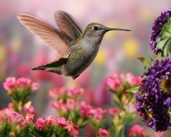 Hummingbird in colorful garden