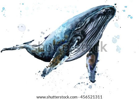 Humpback whale watercolor illustration. Underwater fauna