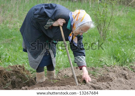 Humpback 80-90 years old woman working at her garden, real situation picture #13267684
