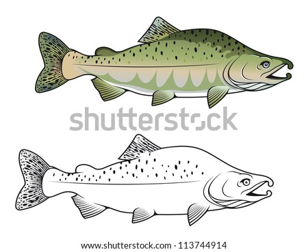 Hunchback salmon fish in color and monochrome versions. Vector version also available in gallery