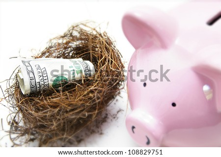 hundred dollar bill in a nest, with piggy bank