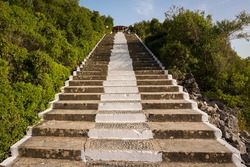 Hundred stairs in the forest