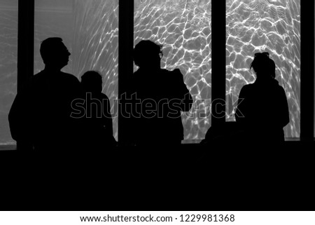 HUNGARY - BUDAPEST 7 OCTOBER 2018 Silhouettes of people on a background looking at the pool at the zoo #1229981368
