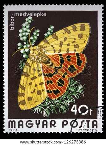 "HUNGARY - CIRCA 1974: A stamp printed in Hungary a shows Purple Tiger Moth, with the same inscriptions, from the series ""Butterflies and Moths"", circa 1974"