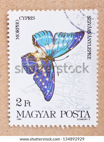 "HUNGARY - CIRCA 1984: A stamp printed in Hungary from the ""Butterflies and Moths"" issue, shows a swallowtail morpho cypris, butterfly, circa 1984."