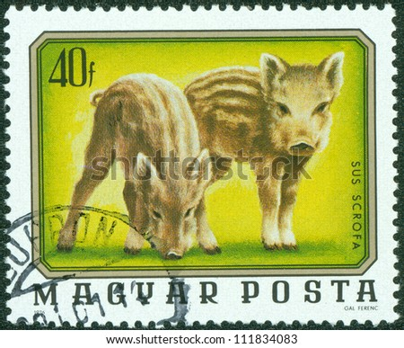 HUNGARY - CIRCA 1976: A stamp printed in Hungary from the \