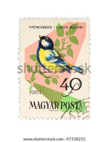 HUNGARY - CIRCA 1961: A stamp printed in Hungary showing birds, circa 1961