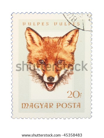 HUNGARY - CIRCA 1985: A stamp printed in Hungary showing fox circa 1985