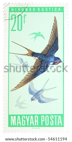 HUNGARY - CIRCA 1975: A stamp printed in Hungary showing swallow, circa 1975