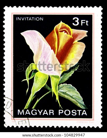 "HUNGARY - CIRCA 1982: A stamp printed in Hungary shows a rose with the inscription ""Invitation"", from the series ""Flowers"", circa 1982"