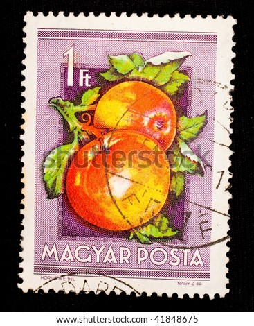HUNGARY - CIRCA 1966: A stamp printed in Hungary shows image of two apples, series, circa 1966