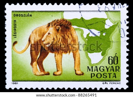 HUNGARY - CIRCA 1981: A stamp printed in Hungary shows Lion - Panthera leo, circa 1981