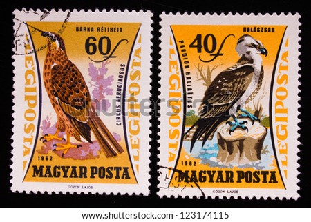 HUNGARY - CIRCA 1962: A stamp printed in Hungary shows two different kinds of wild birds,circa 1962
