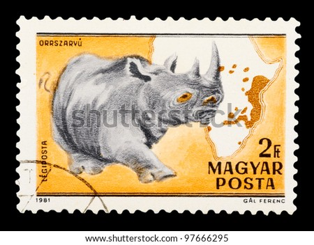 HUNGARY - CIRCA 1981: The postal stamp printed in HUNGARY shows Black Rhinoceros - Diceros bicornis, series animals, circa 1981