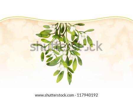 Hunging Mistletoe with soft lighting and white band