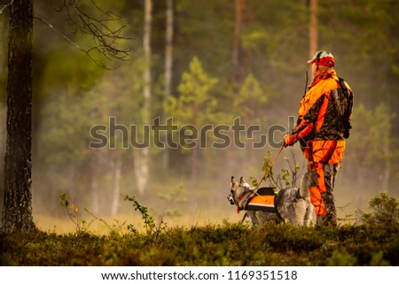 Stock Photo Hunter and hunting dogs chasing in the wilderness