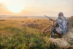 Hunter in camouflage with a gun hunting on black grouse. Hunting for game birds. Hunters open season in autumn.