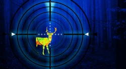 Hunting a deer in a forest at night using thermal imaging. Scope view with crosshair.