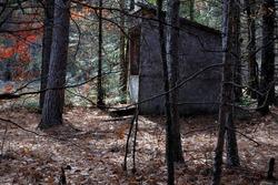 hunting blind in wooded area in disrepair