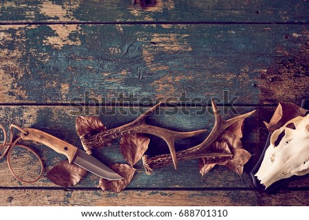 Hunting concept with deer antlers, knife, skull against wooden background