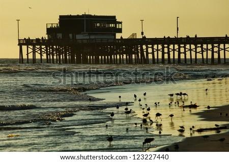 huntington Beach evening