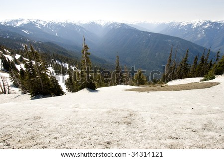 Hurricane Ridge blue mountain range