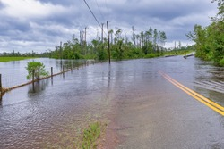 Hurricane Sally produced torrential rain to Bay County, Florida. This is Ed Lee Road in the Bear Creek area.