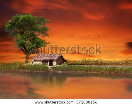 hut during sunset in a small village of Bangladesh