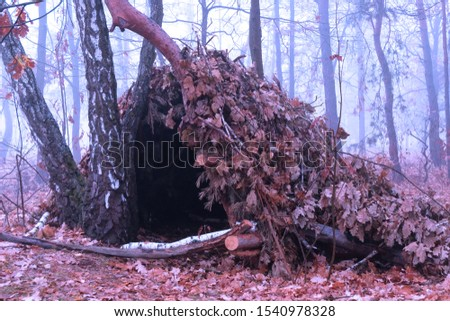 Hut of branches or wickiup or hovel of brushwood and twigs in the countryside. Made from trees, sticks and leaves #1540978328