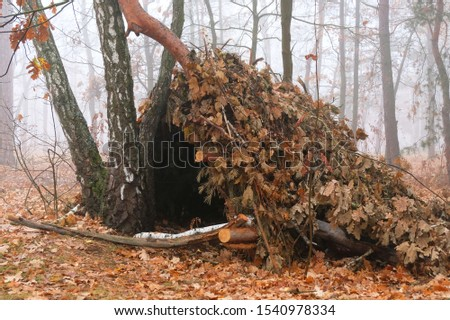 Hut of branches or wickiup or hovel of brushwood and twigs in the countryside. Made from trees, sticks and leaves #1540978334