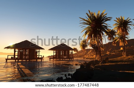 Huts and palm trees on the beach.