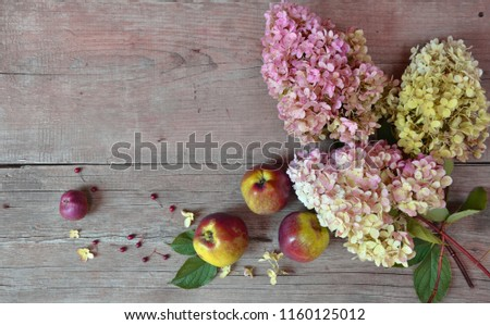 Hydrangea and apples on wooden background #1160125012