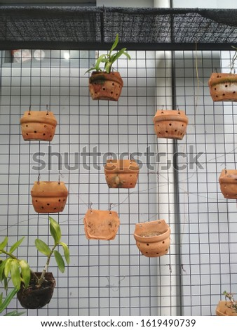 Hydroponic planting technique is a planting technique using air and rock media. usually used on narrow land