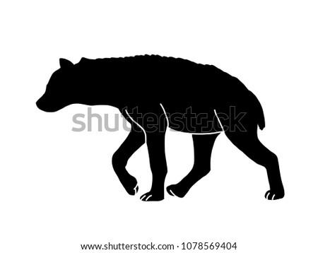 hyena shadow illustration