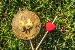 I love bitcoin. Bitcoins and red heart on green grass background front side