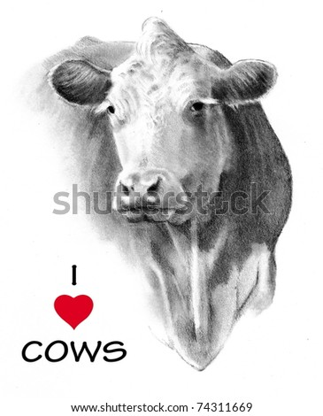 I Love Cows: Freehand Pencil Drawing