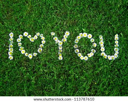 I Love You - flowers text on the grass #113787610