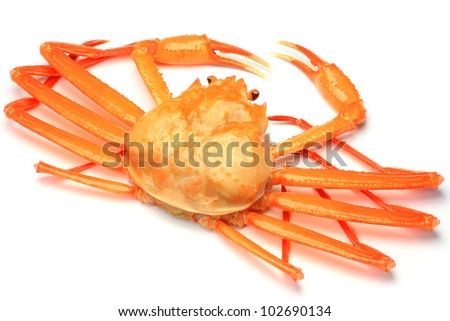 I took deep red snow crab in a white background.