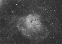 IC 410 emission nebula also known as Tadpole in the Auriga constellation. In this image there are some bright stars like 16,17,18 and 19 Aurigae. Taken with my telescope.