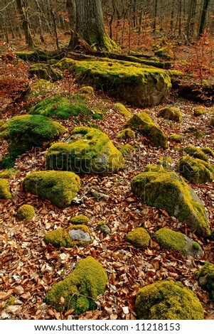 Ice Age Stones In Scandinavian Forest Stock Photo 11218153 ...