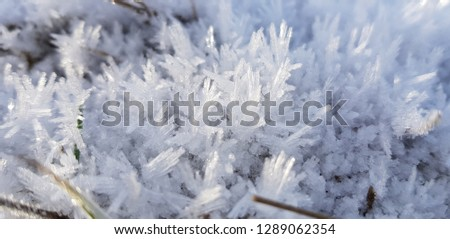 Ice crystals,close up frost in the morning,frost background,frost on the ground,frost on grass #1289062354