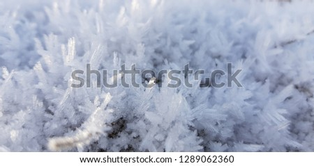 Ice crystals,close up frost in the morning,frost background,frost on the ground,frost on grass #1289062360