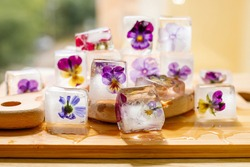 Ice cubes with flowers violets on wooden table.