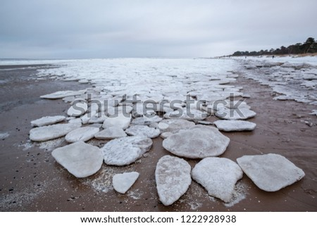 ice floes on the seashore #1222928938