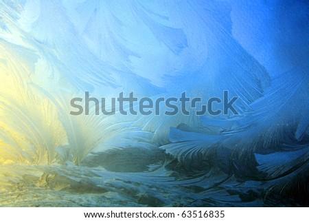 Ice flower background