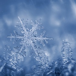 Ice, frost and snowflakes