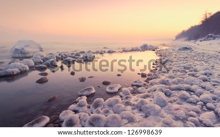 ice on the shore