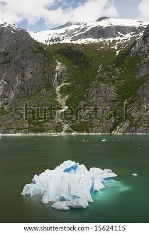 Iceberg near Dawes Glacier, Endicott Arm, Alaska