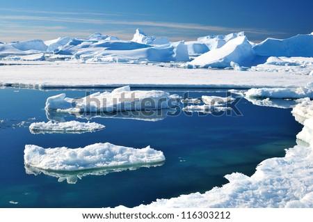 Icebergs and ocean. Peculiar landscape of the Antarctica.