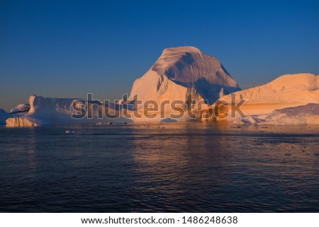 Icebergs and the ocean's surface illuminated by the last rays of the setting sun. #1486248638
